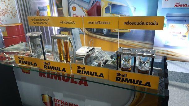 Shell Rimula 002