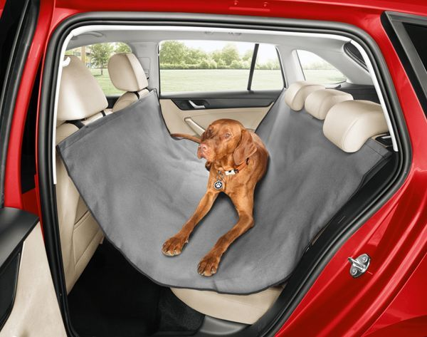 https://img.icarcdn.com/autospinn/body/skoda-accessories-dogs-1.jpg