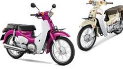 All New Honda Super Cub โฉมใหม่ ขวัญใจวัยโจ๋ 4.71 หมื่นบาทไทย ขายวันนี้!!