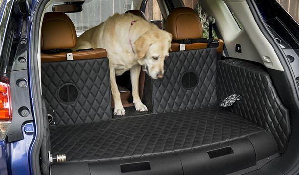 Nissan Rogue Dogue Concept รถต้นแบบที่คนรักน้องหมาต้องการ