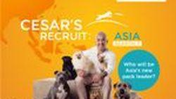"""[PR News] ซีซาร์ มิลลาน กลับมาอีกครั้งกับซีซั่นที่ 3 ของรายการ """"ซีซาร์ รีครูท เอเชีย"""" (Cesar's Recruit Asia)"""