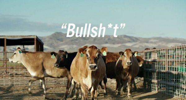 """Toyota เสียดสีนักวิจารณ์ โชว์ Mirai ขับเคลื่อนด้วย """"มูลวัว"""" หรือ """"Bullshit"""""""