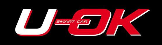 U-OK SMART CAR